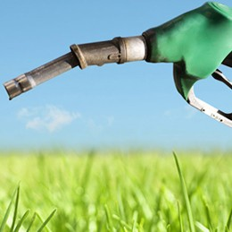 Fuels, Oils and biodiesel